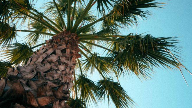 (Ängstliche) Vorfreude - Tansania